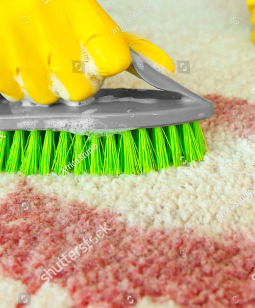 Bio Hazard Clean up, Bio waste